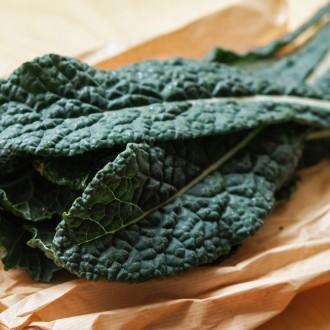 Wo es Kale, Grünkohl oder Palmkohl in Wien zu kaufen gibt
